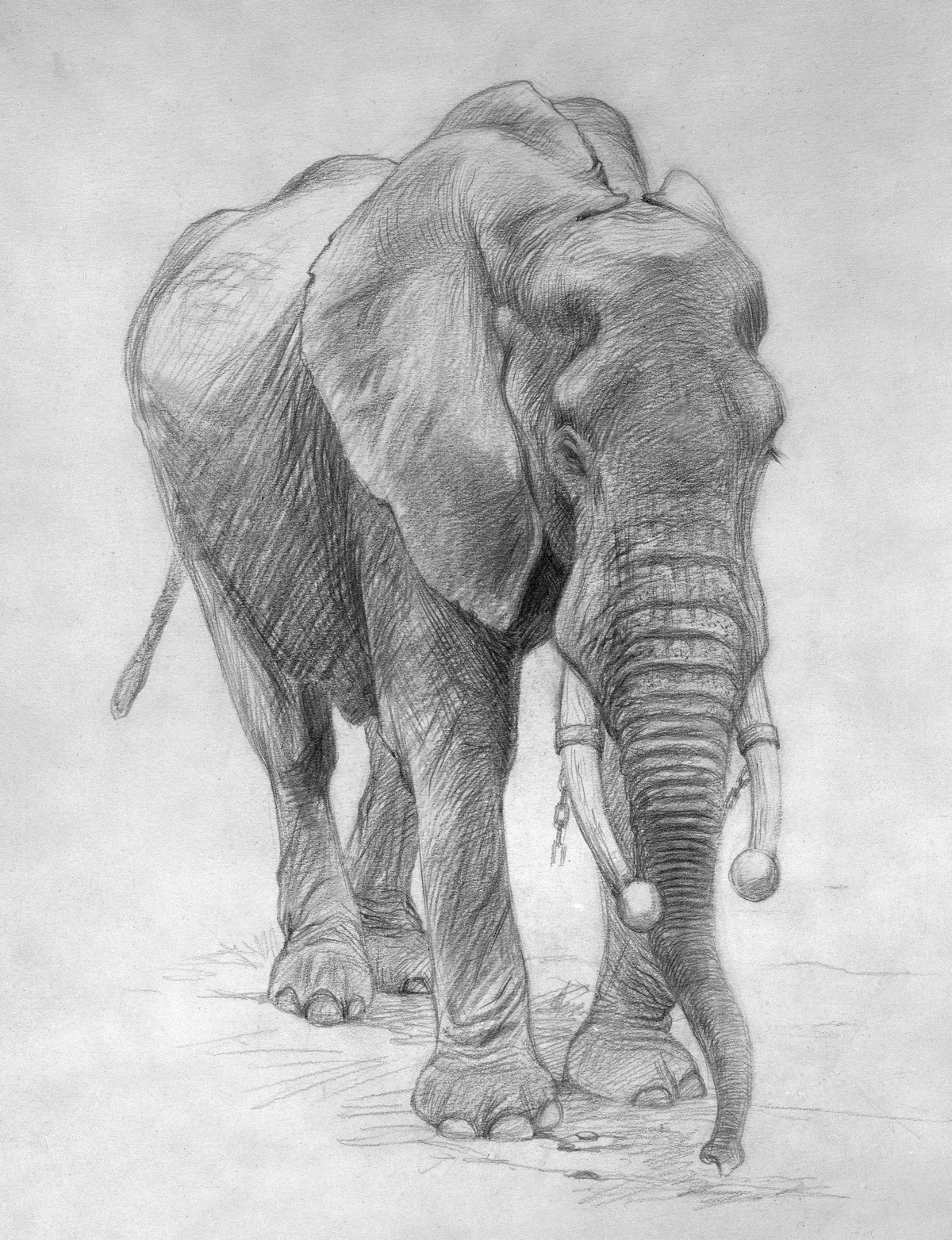 Pencil drawings by famous artists pencil drawings
