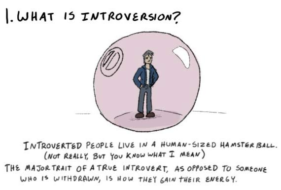 A visual guide to understanding the introverted, and how to live with them