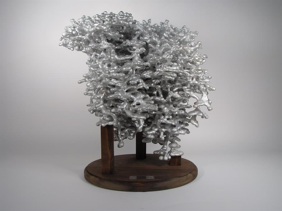 casting fire ant colony with molten aluminum