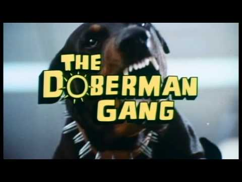 The Doberman Gang somehow didn't win Best Picture in 1972 ...