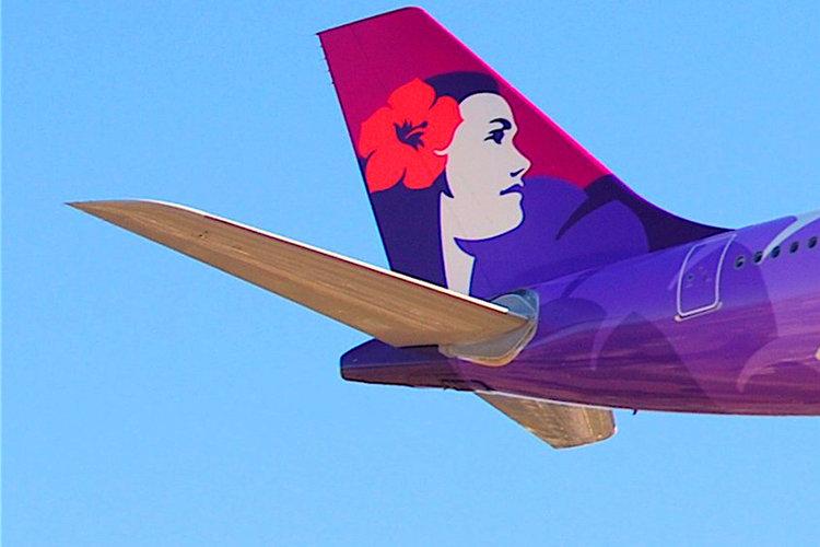 California runaway teen survives flight to Hawaii in plane's wheel well