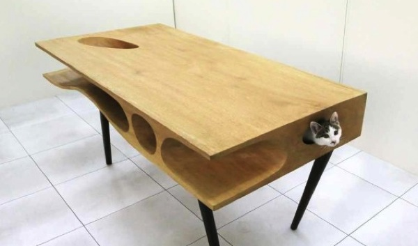 CATable desk designed for humans and cats