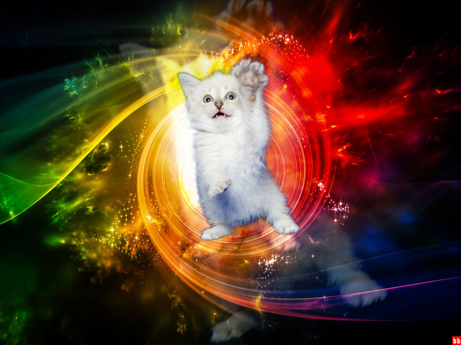 Now Entering Hy-fur-space