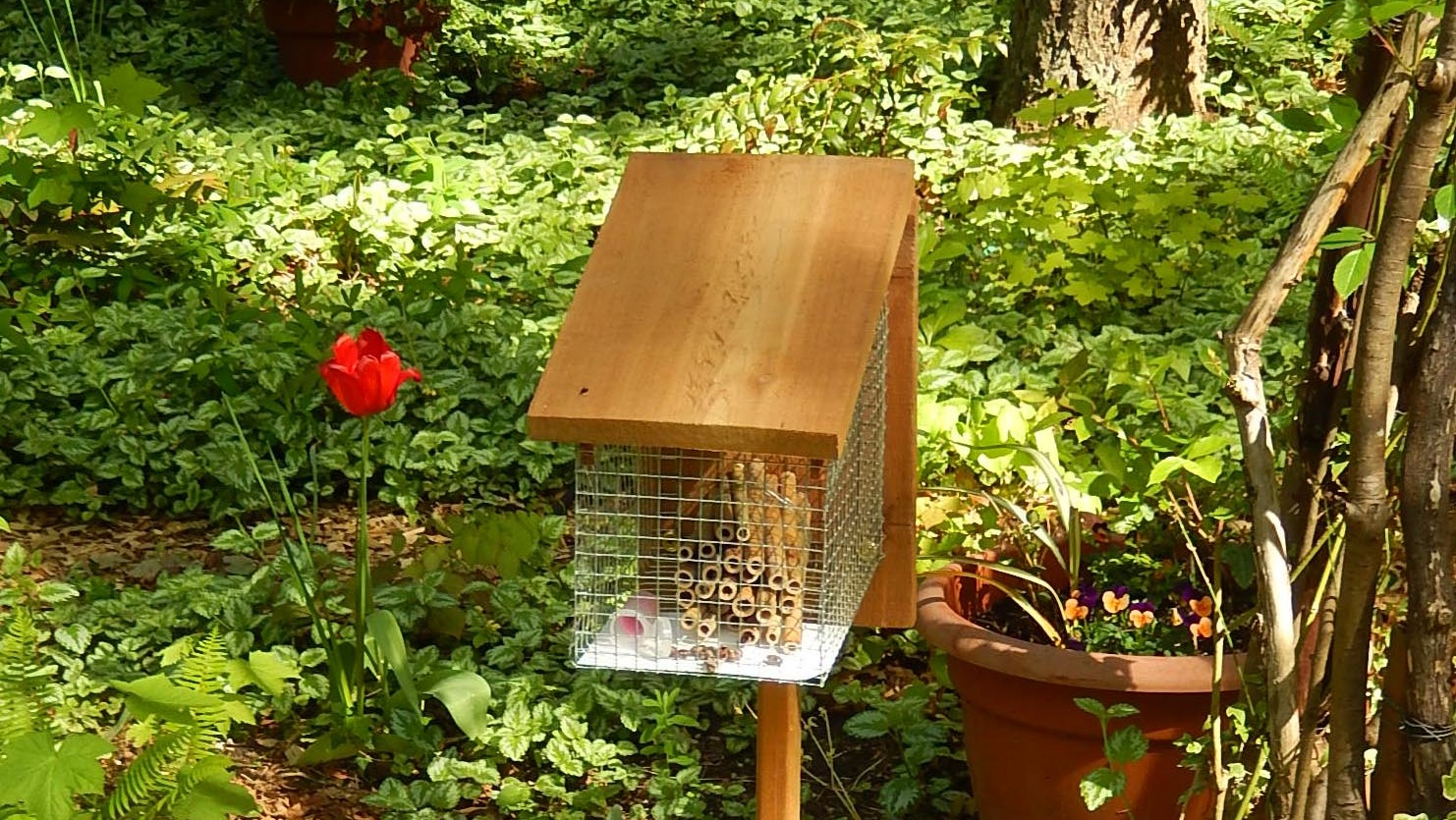 Build your own mason bee house boing boing for Build your house