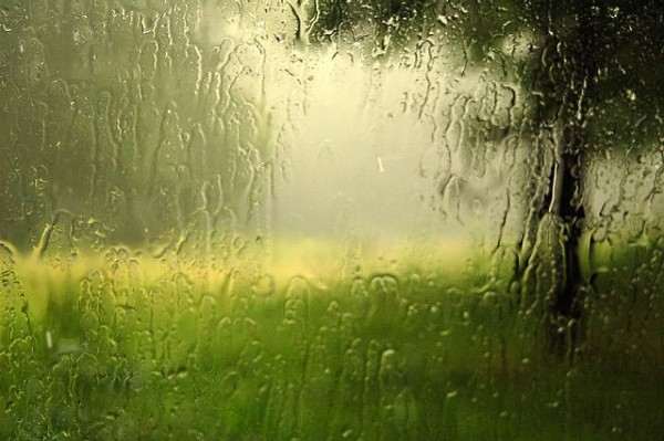 What causes that fantastic after-the-rain smell?