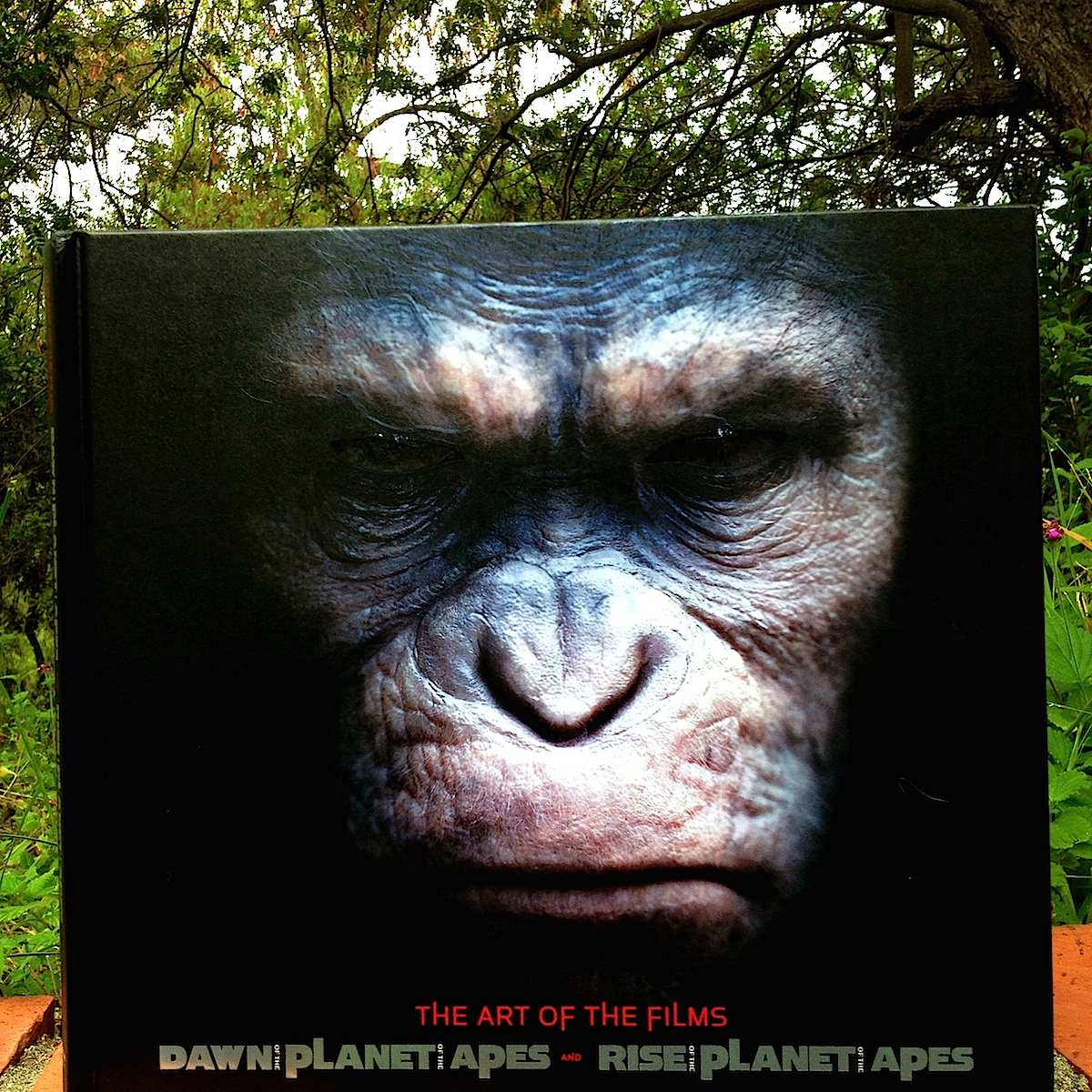 Dawn of the Planet of the Apes and Rise of the Planet of the Apes: The Art of the Films
