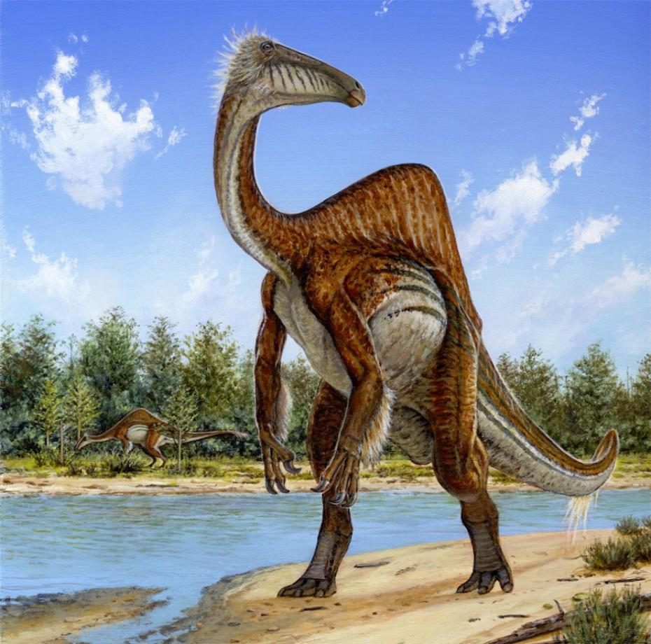 Deinocheirus-990x980