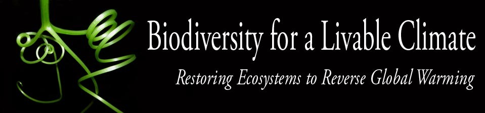 Restoring Ecosystems to Reverse Global Warming conference, Medford, Mass, Nov21-23