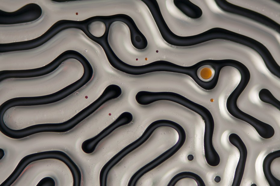 Lose yourself in these 10 amazing cellular-level macro photos by artist Linden Gledhill