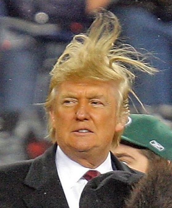 http://media.boingboing.net/wp-content/uploads/2015/07/trump-hair.jpg