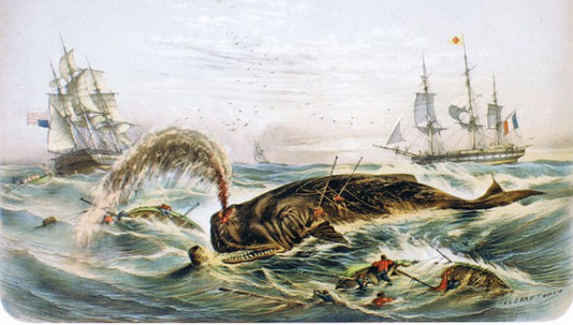2015-08-24-podcast-episode-70-sunk-by-a-whale-1