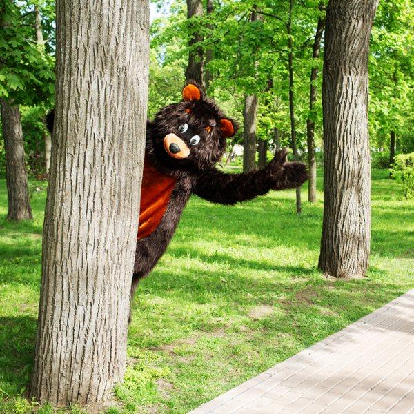bear-suit