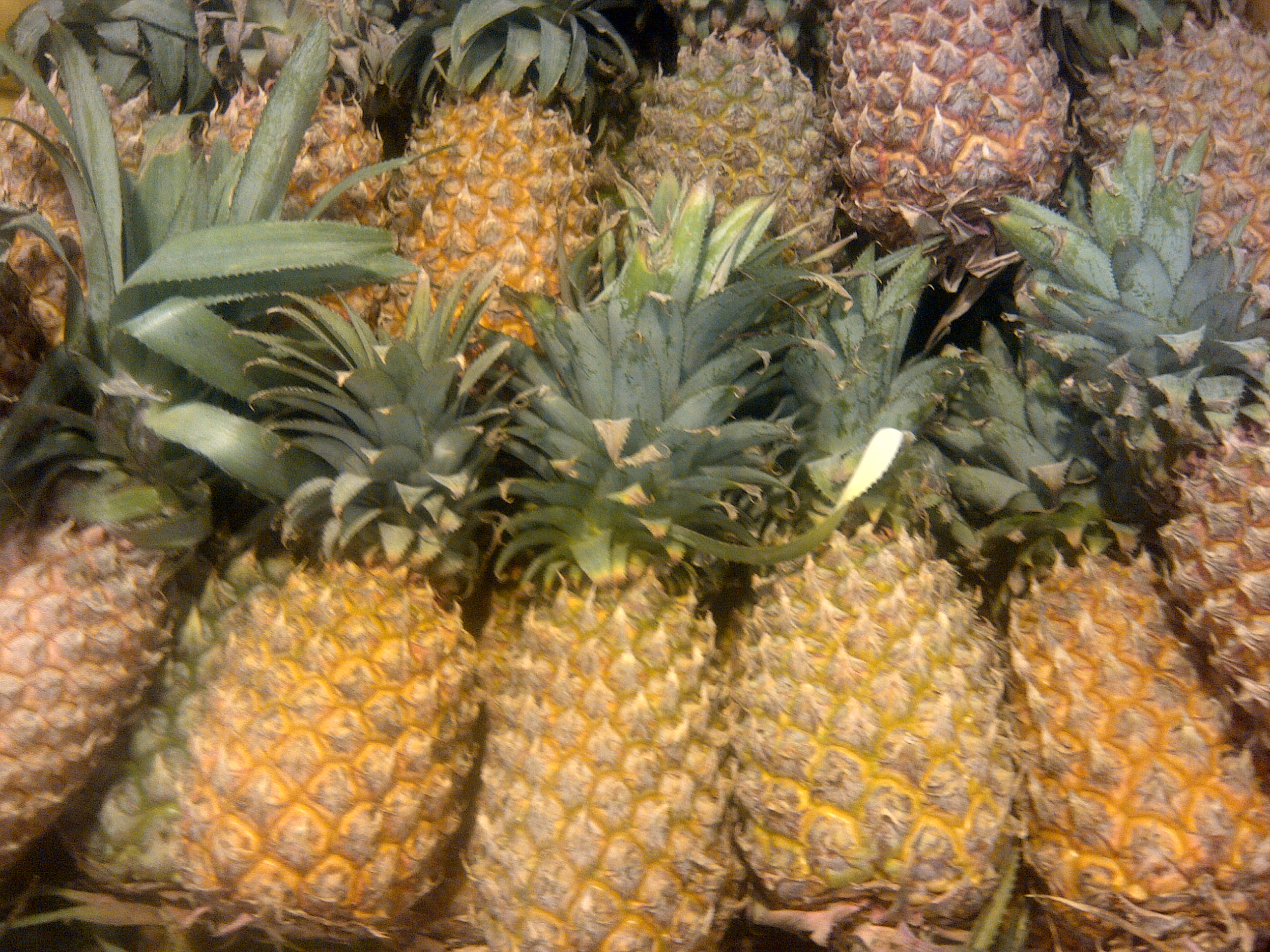 Pineapple_123