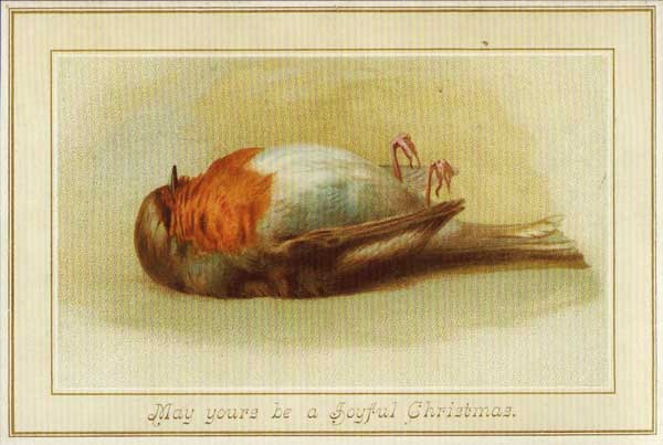 When Dead Birds Were A Good Thing To Put On Christmas Cards Boing