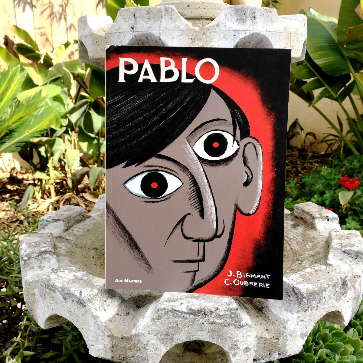 Pablo – A graphic biography captures the prolific life of Picasso