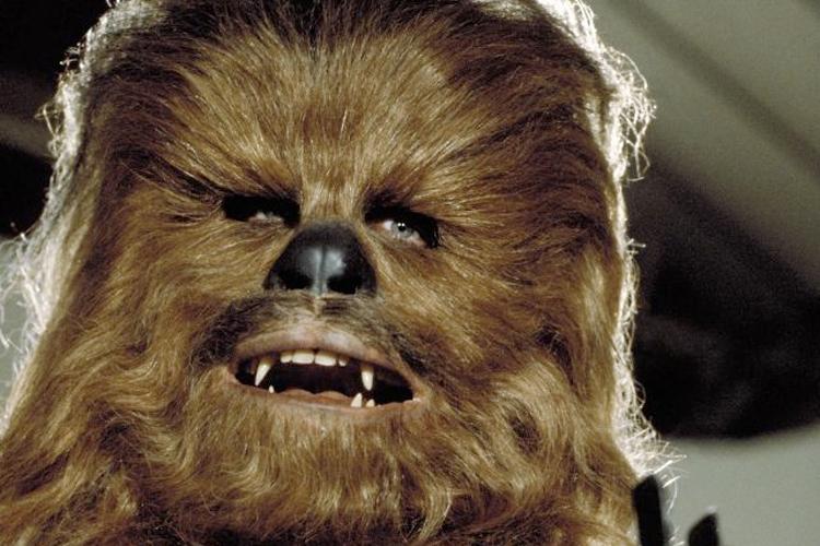 Chewbacca Porn