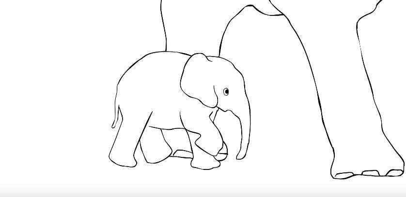 Top Elephant Image