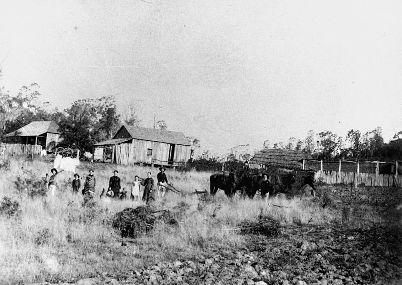 800px-StateLibQld_1_123166_German_farming_family_and_farm_in_Fassifern,_ca._1890
