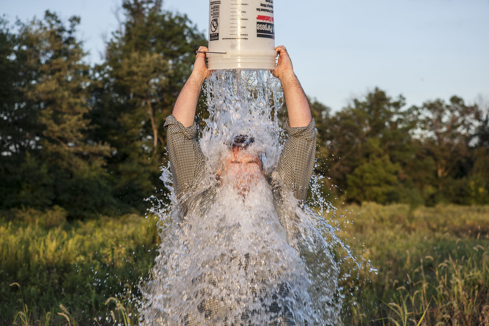 The Ice Bucket Challenge did not fund a breakthrough in ...