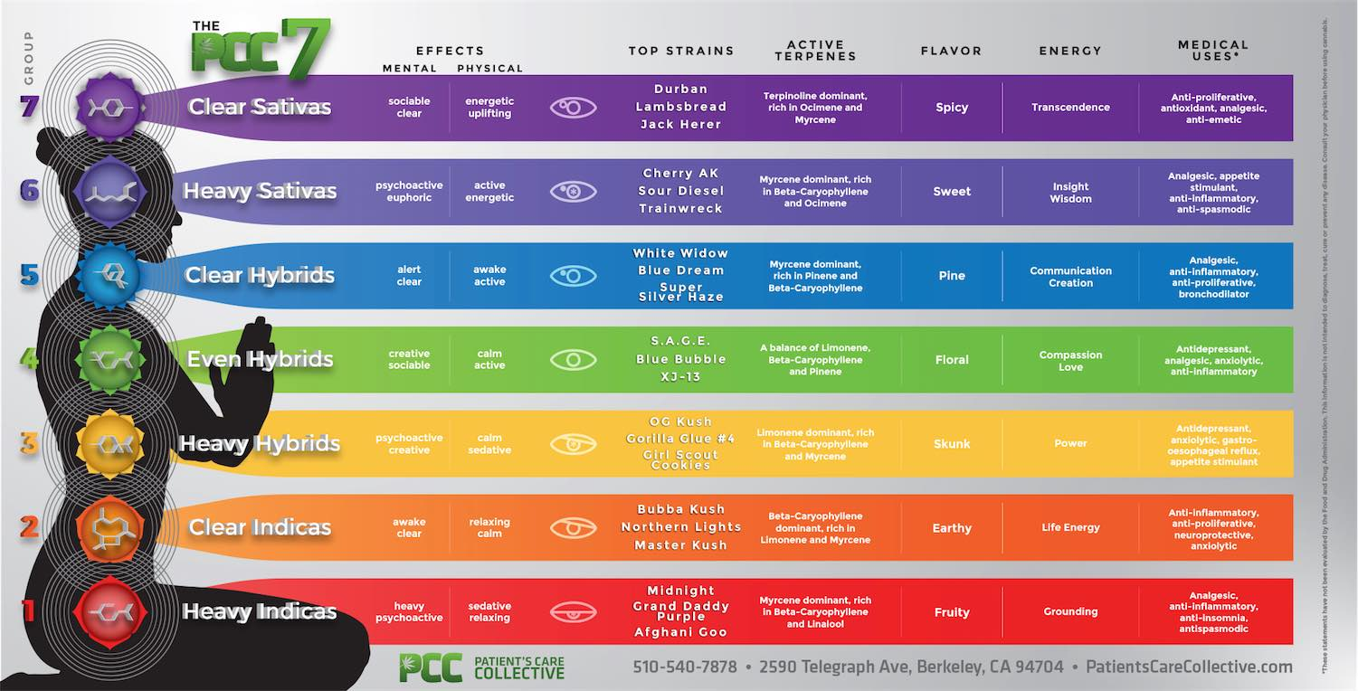 fantastic infographic of cannabis strains    boing boing