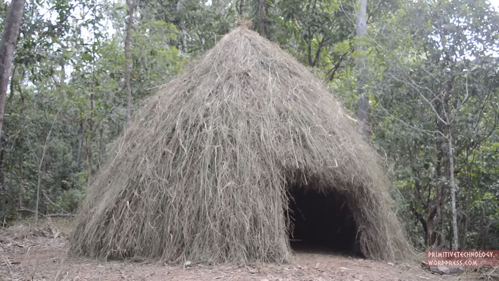 how to build a grass hut    boing boing