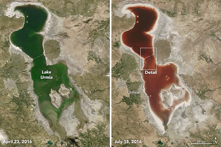 Why did Iran's Lake Urmia just change from bright green to blood red?