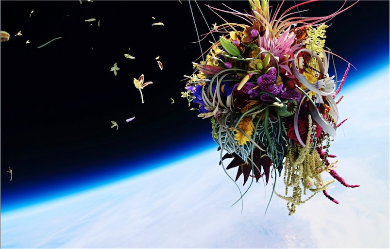 Flowers in near-space