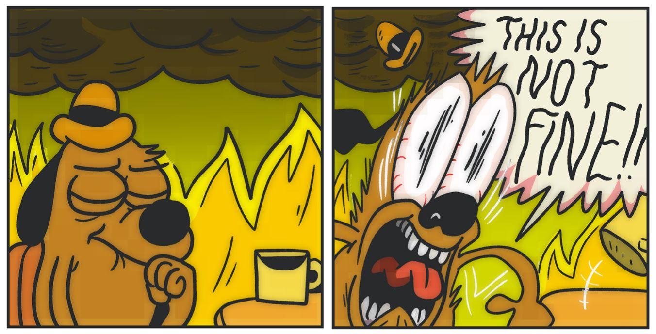 Burning Dog It S Fine