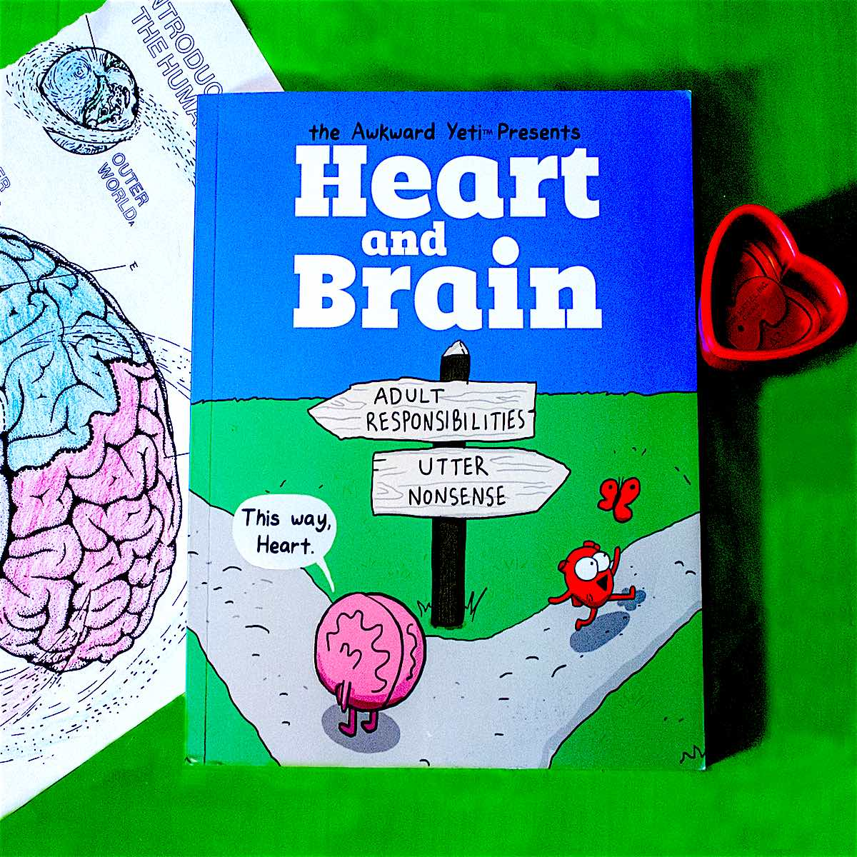 Heart and Brain have extremely different view points but always remain best buds