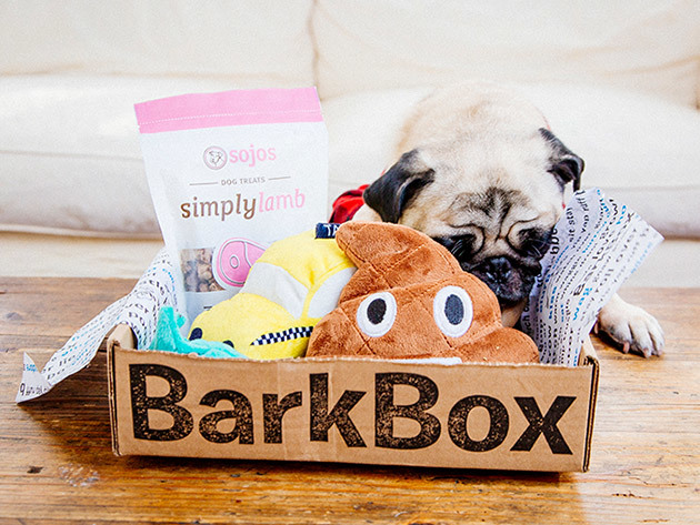 Treat your pup to a free month of BarkBox