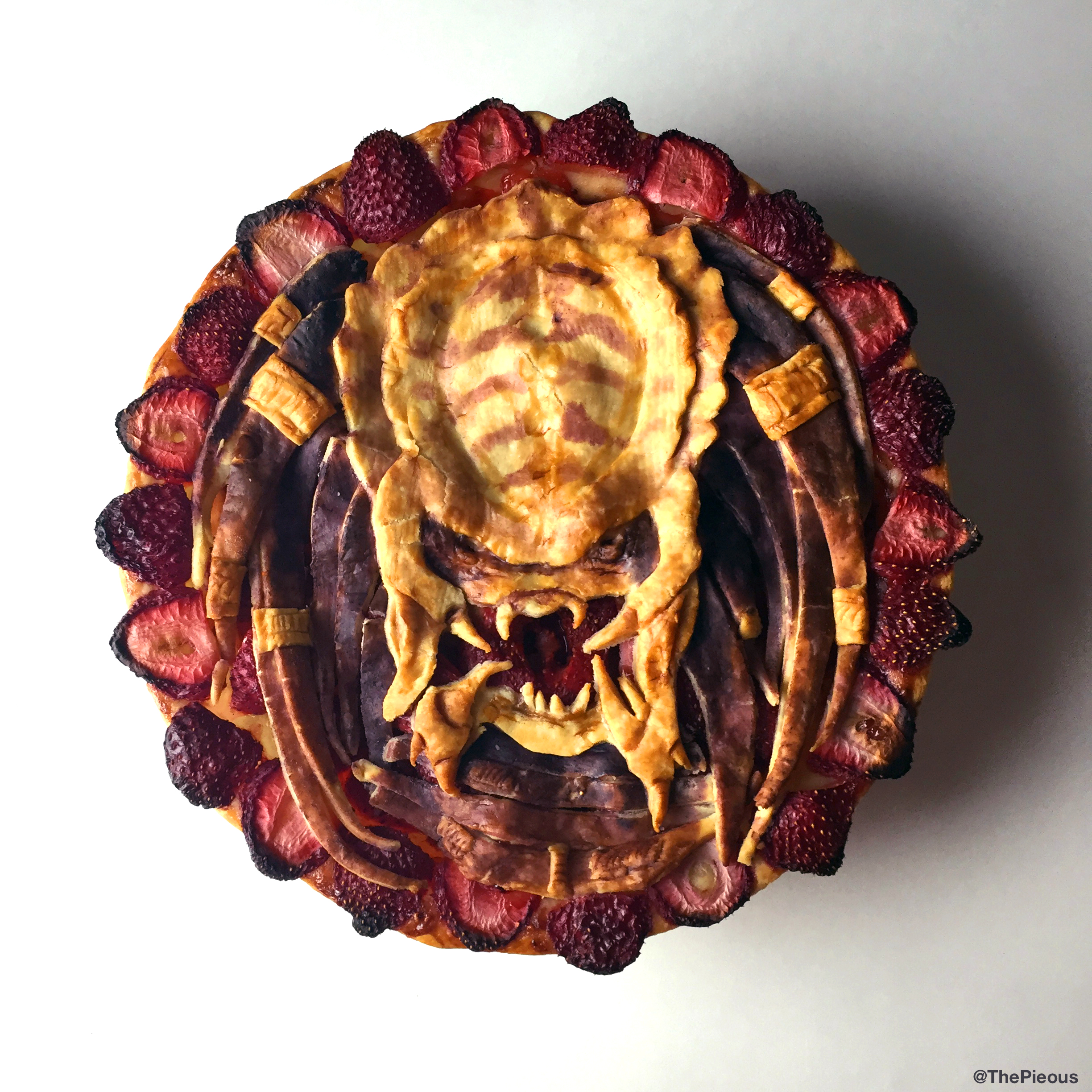 predatorpie_finished