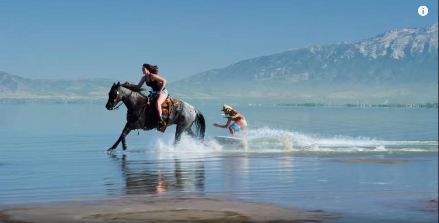 skimboard-horse