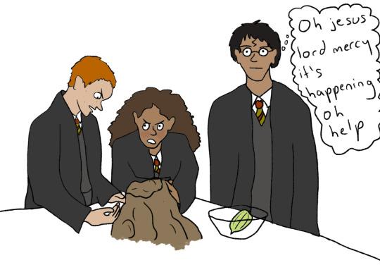 Harry Potter / Boing Boing