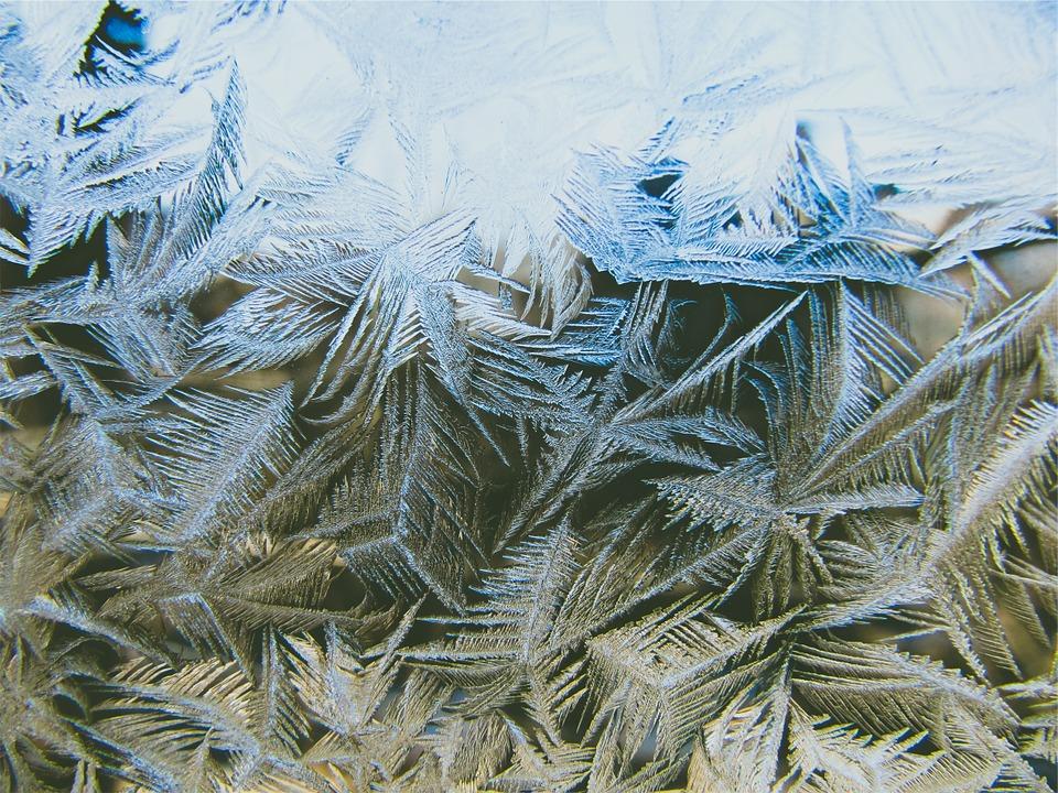 pine-leaves-699180_960_720