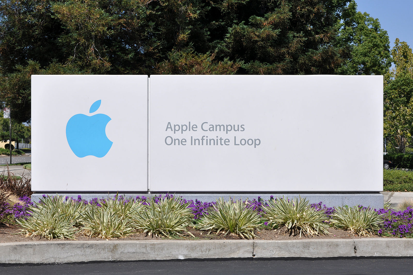 The new Apple campus has a 100,000 sqft gym and no daycare