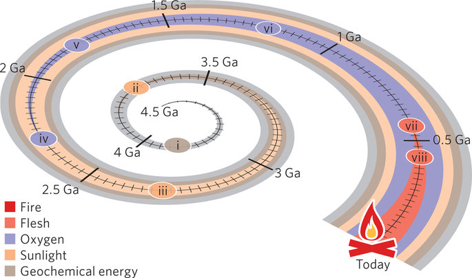 """Thinking of the history of life on Earth in terms of """"energy epochs"""""""