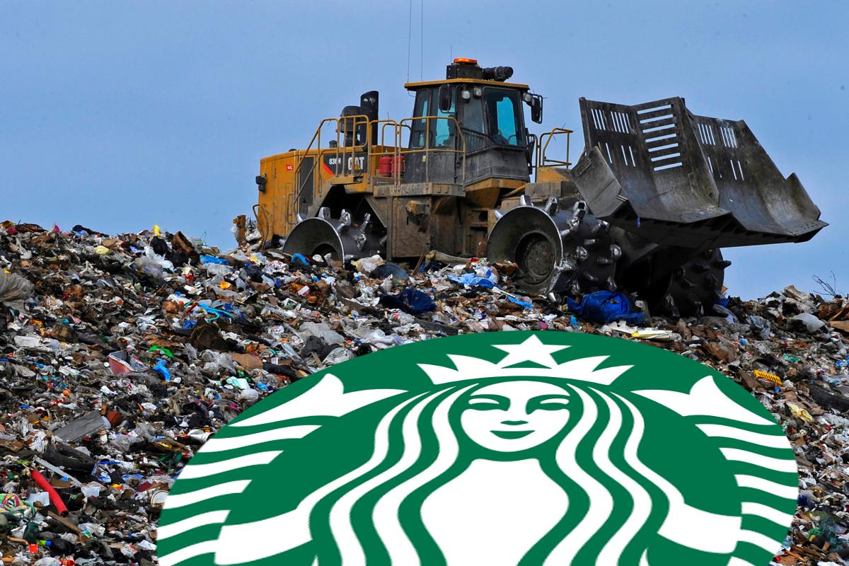Every Year Starbucks Sends 4 Billion Nonrecyclable Paper