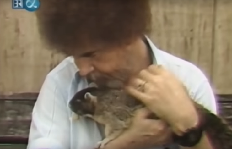 Painter Bob Ross Friend To The Critters Boing Boing