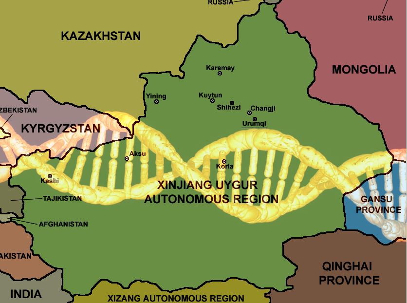 China will collect the DNA of every adult in Xinjiang province