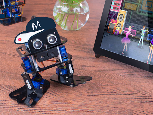 Learn the ropes of robotics with this programmable dancing