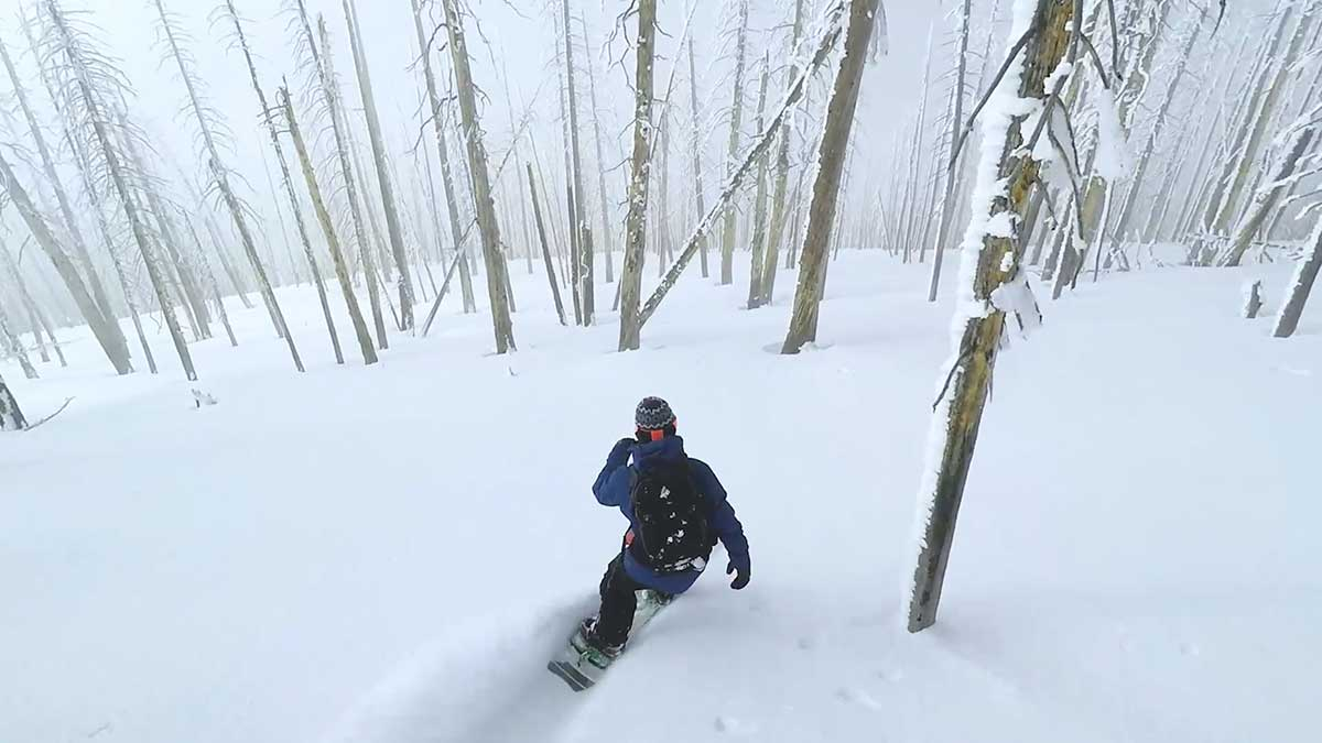 Watch - serene beauty of snowboarding in a forest