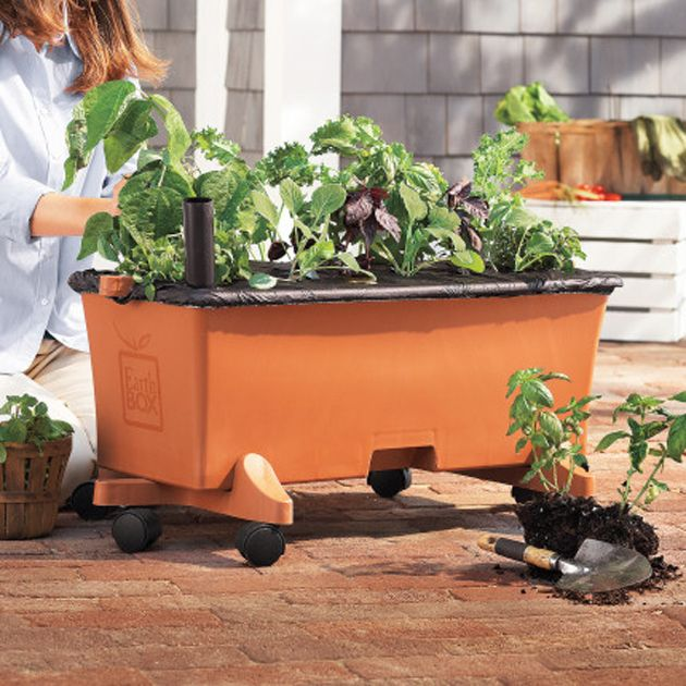 I'm planting most of my garden in Earthboxes this year