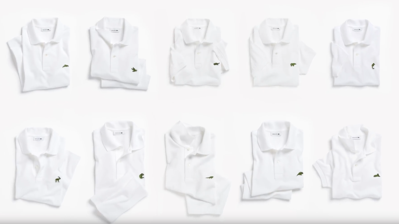 eebe4bc67d4b Lacoste drops its iconic crocodile to bring awareness to 10 endangered  animals   Boing Boing