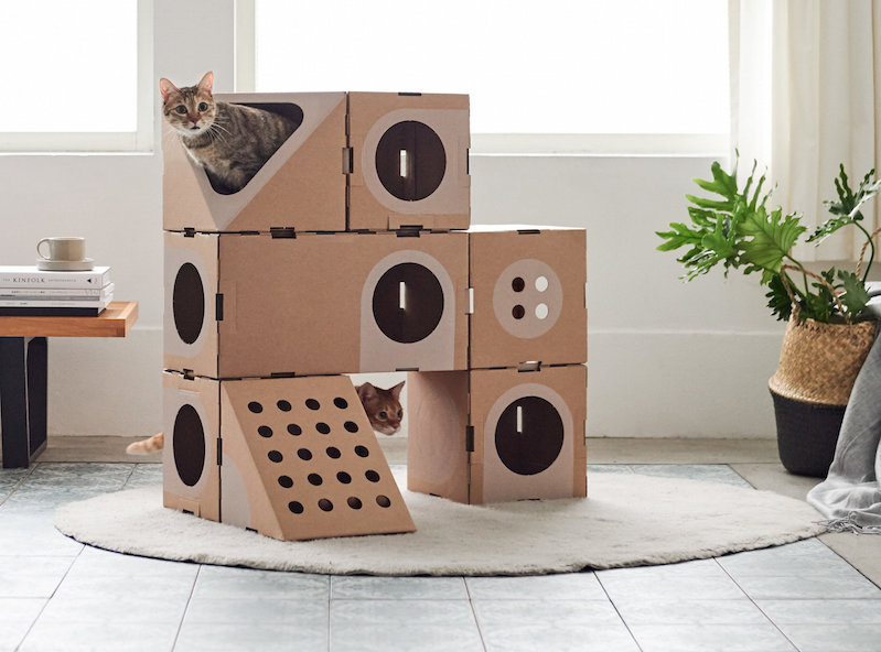 Create modular cat houses with these carboard building blocks ... on cardboard houses and shelters, prison cell house designs, mcpe house designs, cardboard house ideas, cardboard structure designs, cardboard house patterns, cardboard barn playhouse, tube house designs, cardboard house template, paint house designs, shoe box house designs, simple box house designs, cardboard house plans, boxcar house designs, cardboard shelter designs for storage, college house designs, playing card house designs, cardboard buildings, cardboard sculpture designs, cardboard village houses,