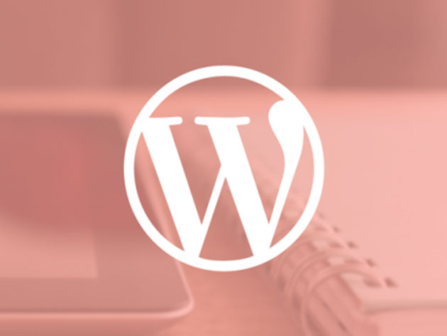 Make your mark on the web with this complete WordPress training