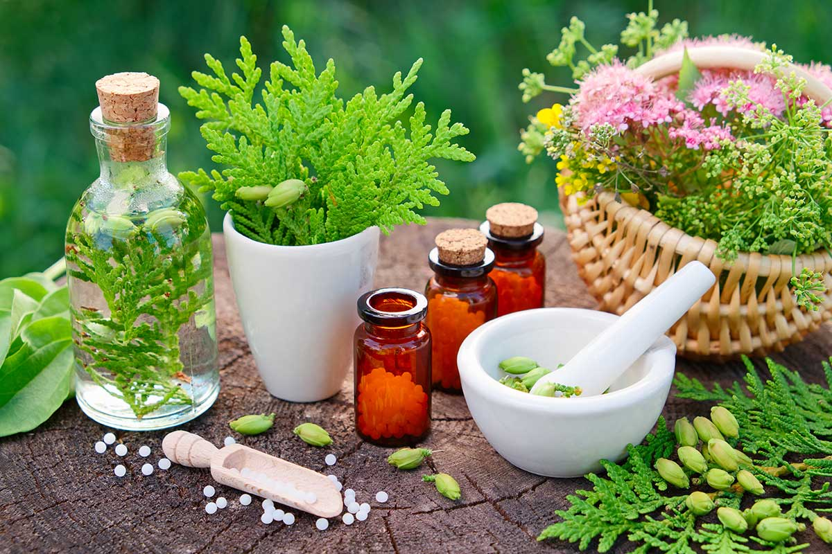 Image result for naturopathy