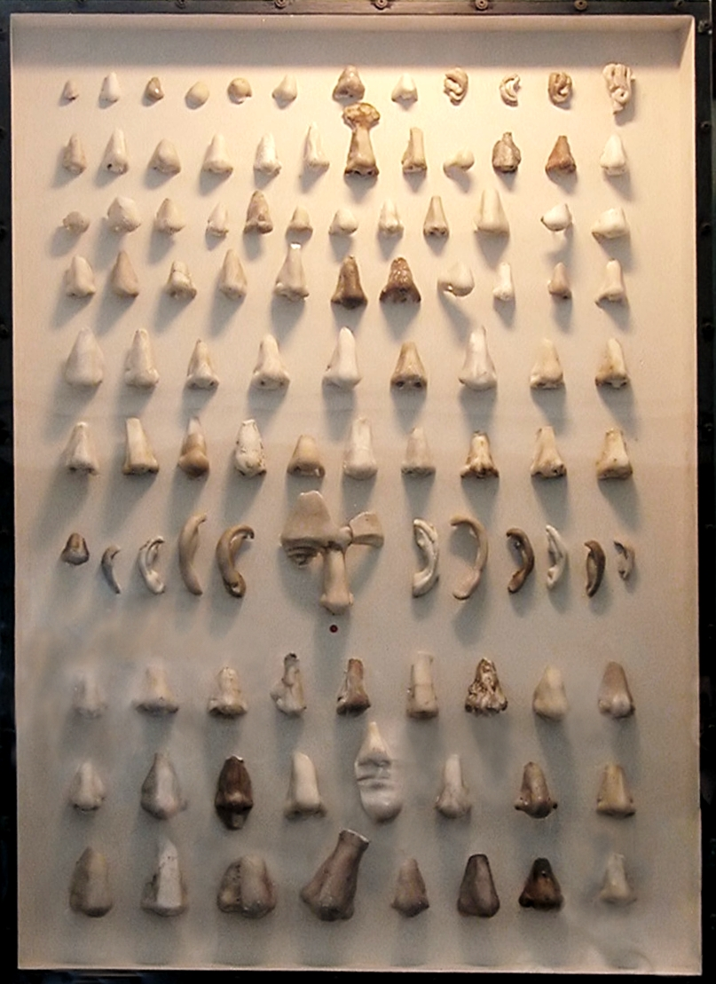 A cabinet of noses