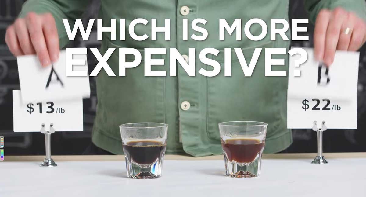 Coffee expert asked to guess difference between cheap and expensive coffee