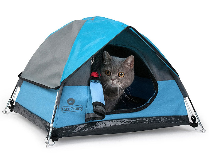 c0ff4aeb55 Cat-sized camping tents   Boing Boing