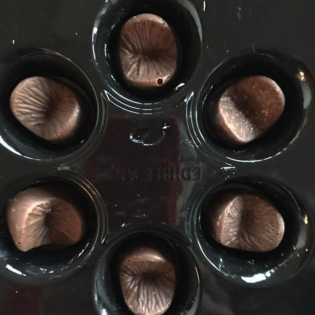 Your Anus in Chocolate